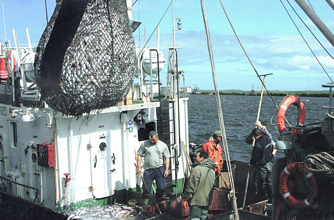 на промысле лосося