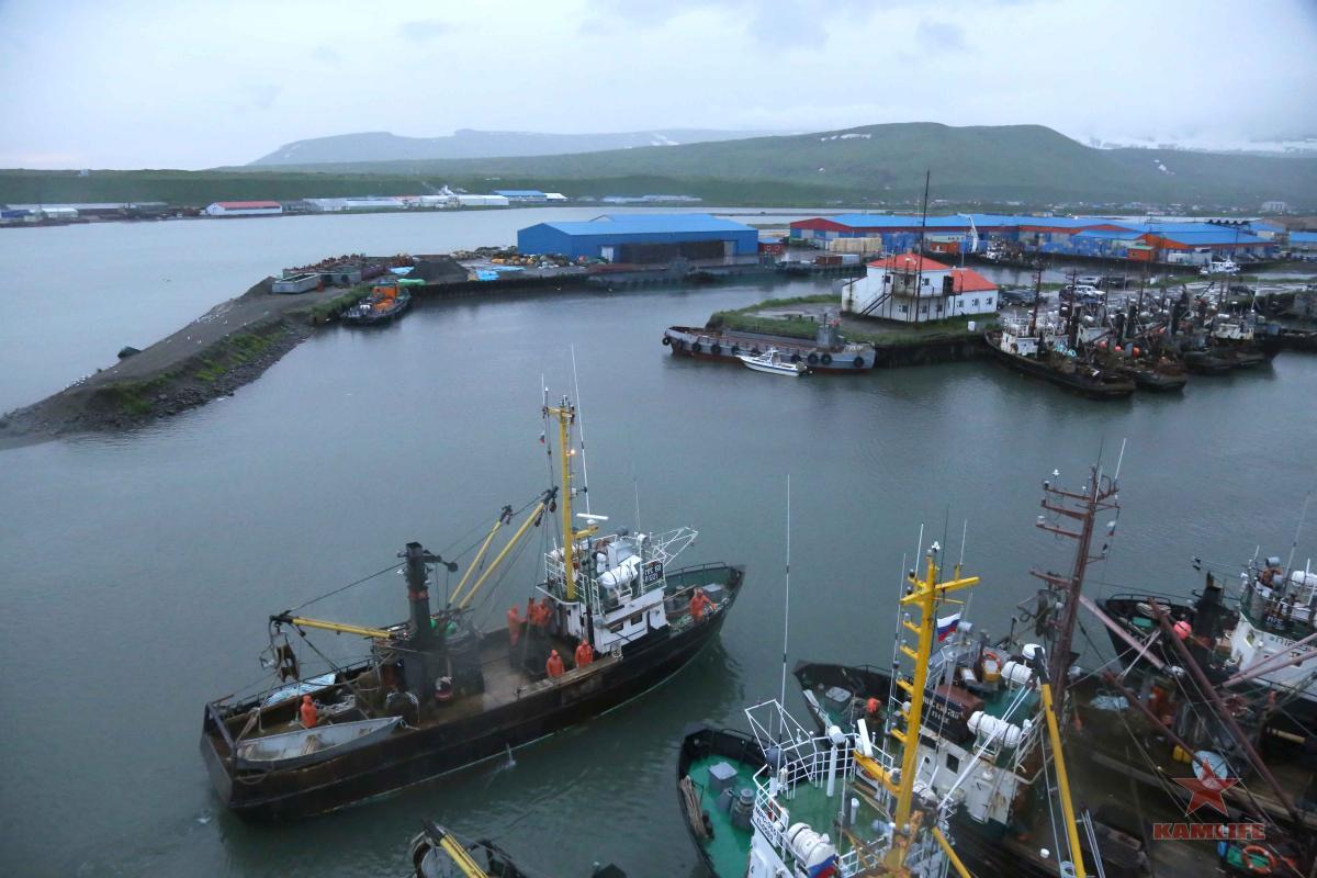 Флотилия сейнеров на Камчатке